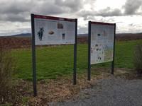 Zwei Ständer mit drei Infotafeln sind zu sehen.